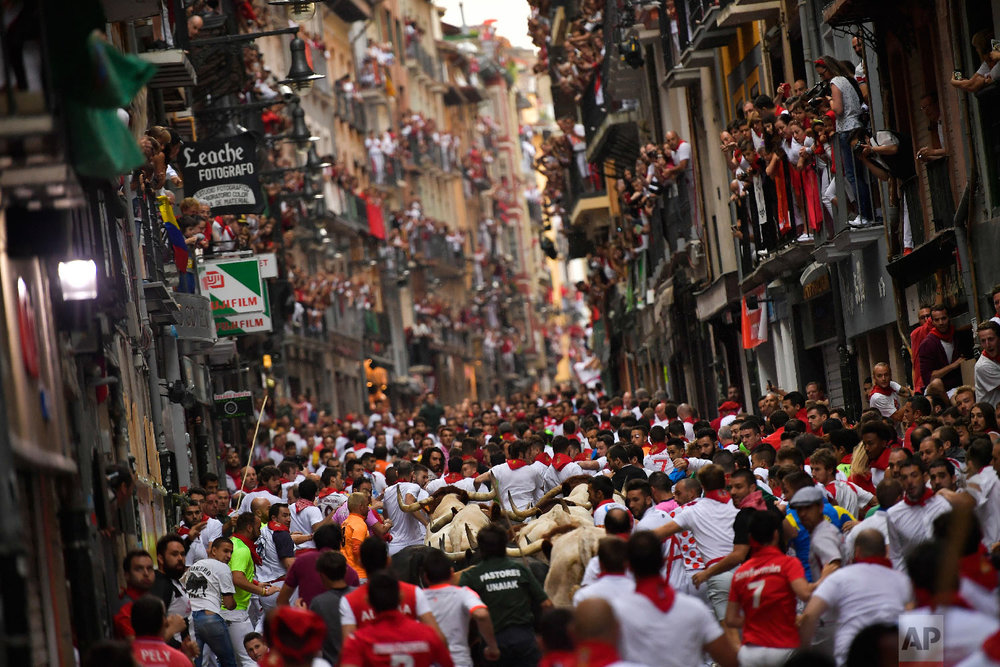 Revellers run next to fighting bulls from the Victoriano del Rio ranch accompanied by steers during the 6th day of the running of the bulls at the San Fermin Festival in Pamplona, northern Spain on July 12, 2018. (AP Photo/Alvaro Barrientos)