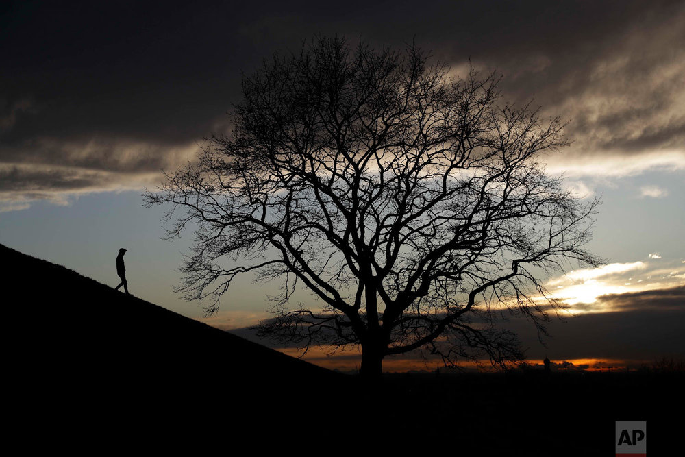 A man passes a tree as he walks down a hill during sun set at the Olympic Park in Munich, Germany on Jan. 9, 2018. (AP Photo/Matthias Schrader)