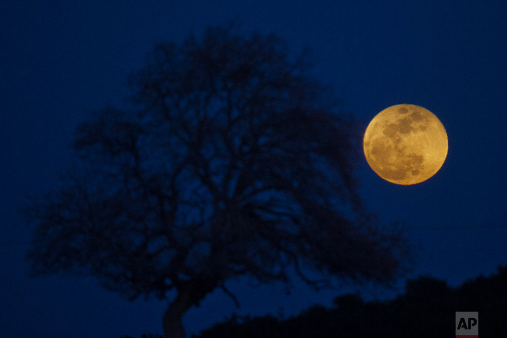 A super blue blood moon rises over Michmoret, Israel, Jan. 31, 2018. (AP Photo/Ariel Schalit)