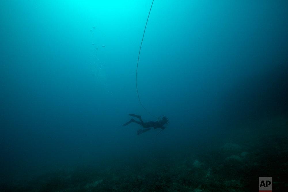 In this Sept. 9, 2018 photo, Rudy Emus Alfred, 19, dives for sea cucumbers near Cay Savannah, in the Miskito coast, Honduras.  (AP Photo/Rodrigo Abd)