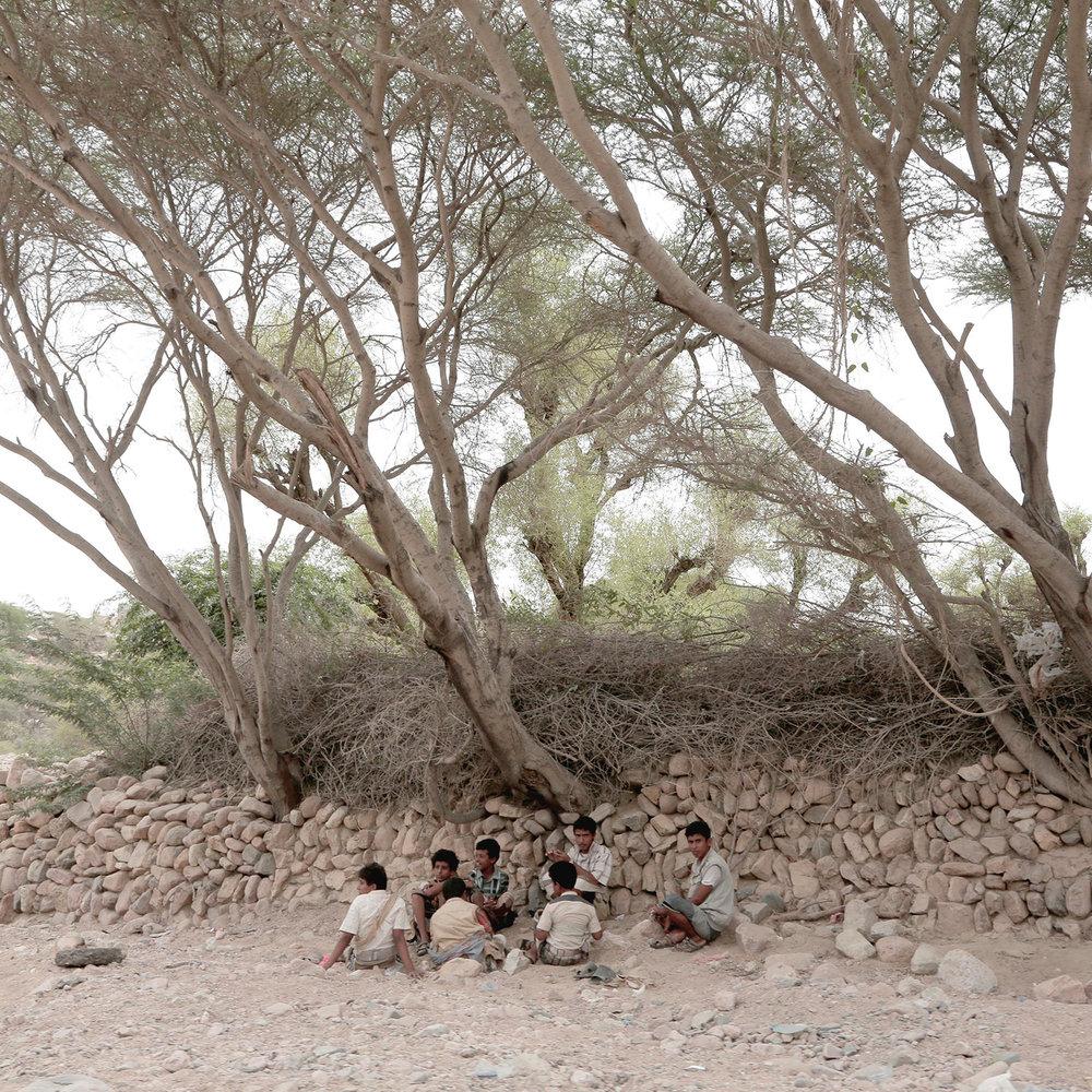 In this July 24, 2018 photo, men gather under trees in Shabwa, Yemen. (AP Photo/Nariman El-Mofty)