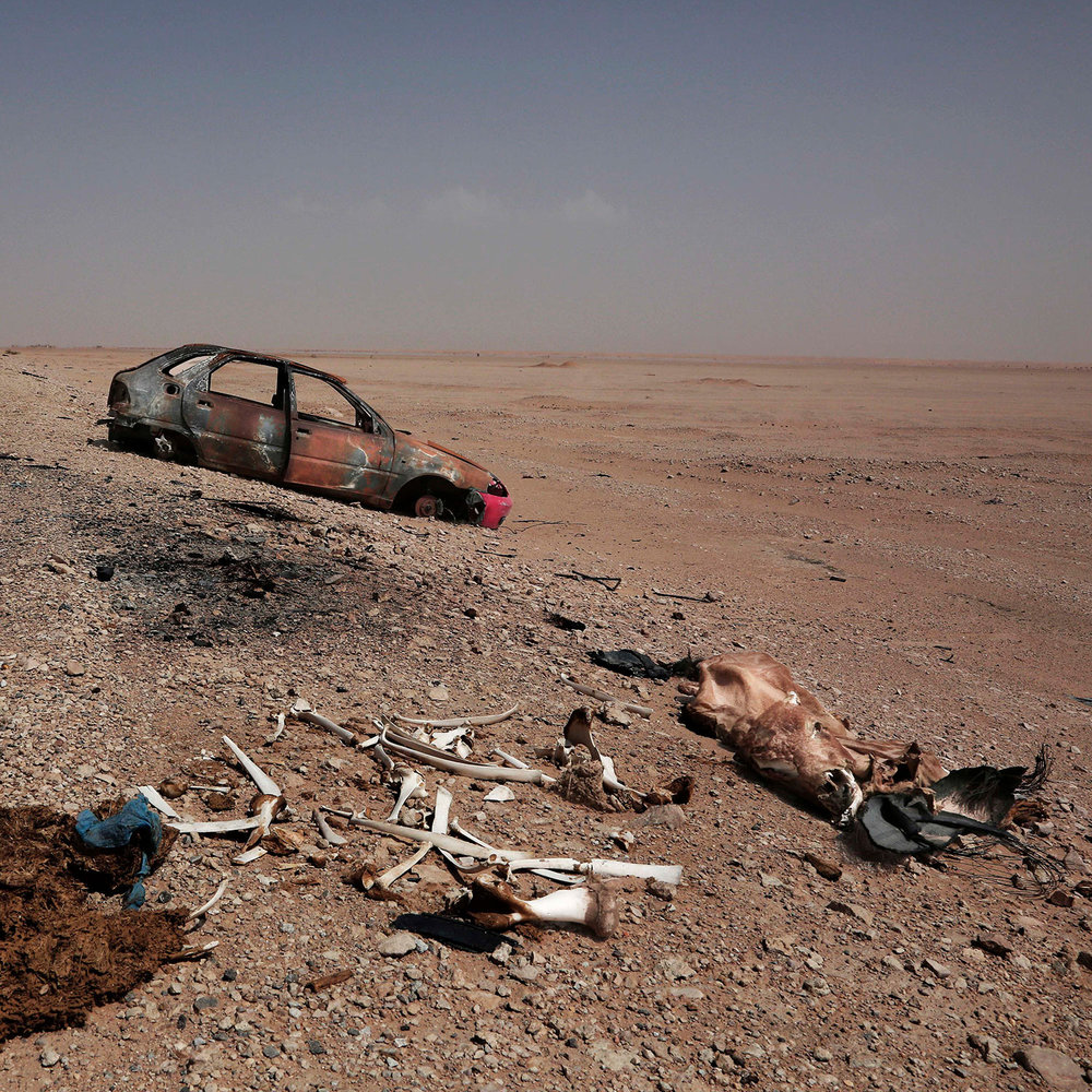 This Aug. 7, 2018 photo, shows the carcase of a cow near a destroyed car on a the road in Shabwa, Yemen, (AP Photo/Nariman El-Mofty)