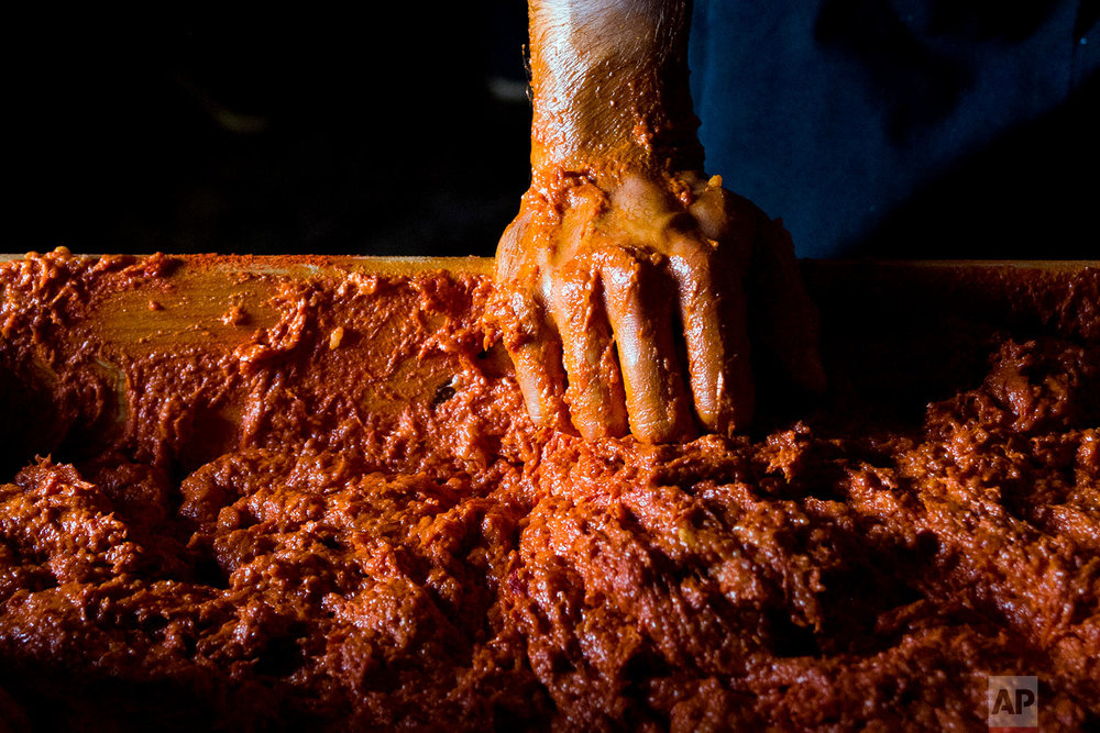 In this photo taken on Nov. 24, 2018, a man helps to knead the mix for sobrasada, a raw cured sausage, during the annual pig slaughter near Petra, some 60 kilometres from Palma, the capital of Mallorca, Spain.  (AP Photo/Francisco Ubilla)