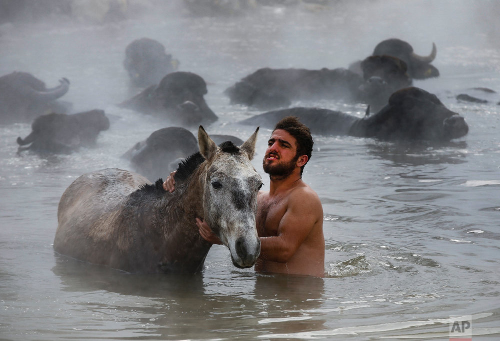Muhammed Toren, 18, washes his horse in a hot spring along with his water buffaloes near the village of Budakli, in the mountainous Bitlis province of eastern Turkey, Thursday, Jan. 24, 2019. (AP Photo/Emrah Gurel)
