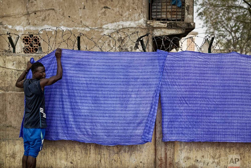In this photo taken Tuesday, Feb. 19, 2019, a craftsman hangs indigo-dyed cloths up to dry, at the ancient dye pits of Kofar Mata in Kano, northern Nigeria. (AP Photo/Ben Curtis)