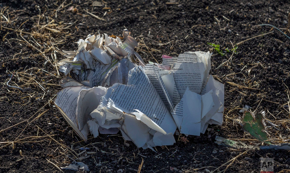 Documents lie on the ground near Bishoftu, Ethiopia, March 11, 2019, where Ethiopia Airlines Flight 302 crashed Sunday. (AP Photo/Mulugeta Ayene)