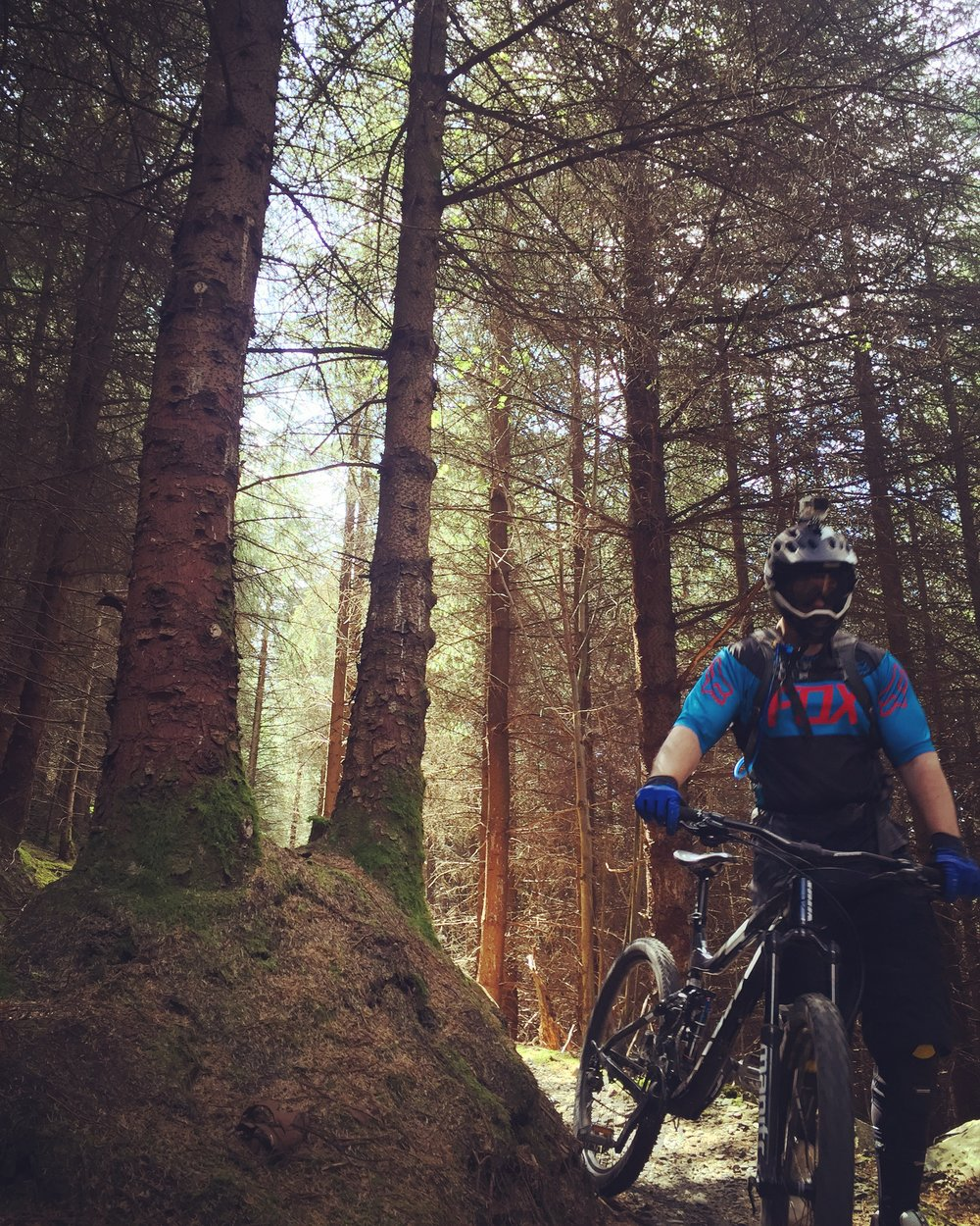 silhouettes_trees_kilbroney_forest_trails_rostrevor_mtb_mountainbiking_ni_explorer_niexplorer_northern_ireland_blog.jpg