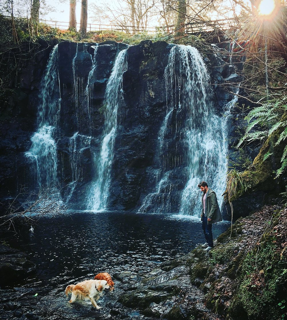 glenoe_waterfall_golden_retriver_dogs_antrim_ni_explorer_niexplorer_northern_ireland_blog.jpg