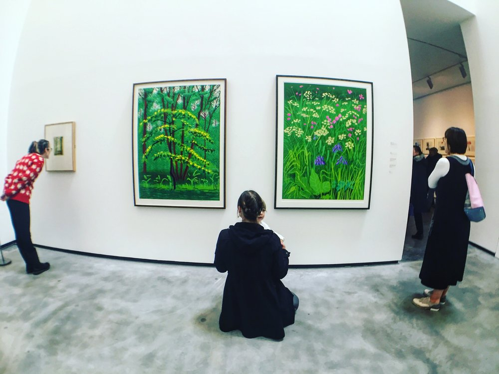 famliy_mum_child_painting_hockney_painting_tall_gallery_the_mac_belfast_northern_ireland_ni_explorer_niexplorer.jpg