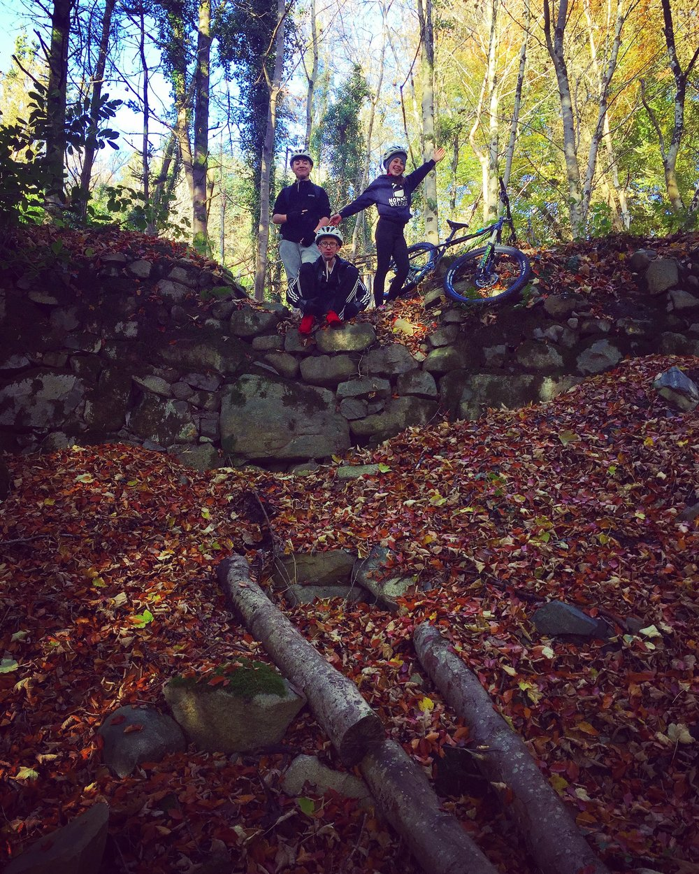 castlewellan_forest_park_mountainbike_kayak_maze_niexplorer_ni_explorer_northern_ireland.jpg