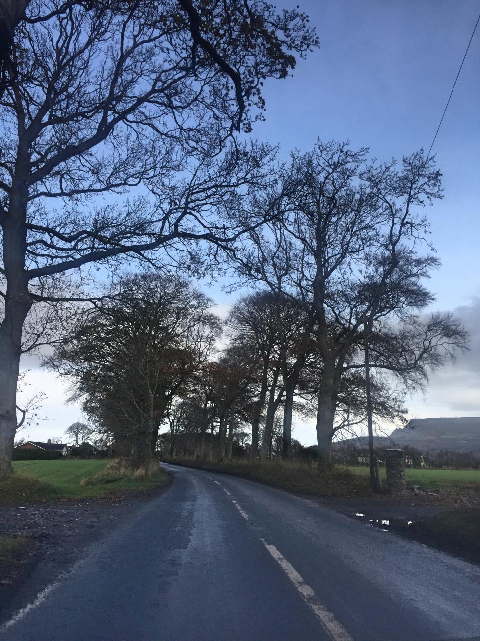 limavady_roe_park_niexplorer_ni_explorer_northern_ireland (1).jpg