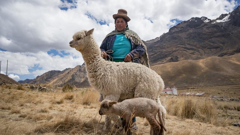 peruvian-woman-lama-alpaca-arequipa-peru-september-113641565.jpg