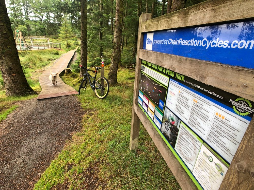 ni_explorer_davagh_forest_mountain_biking_northern_ireland (1).jpg