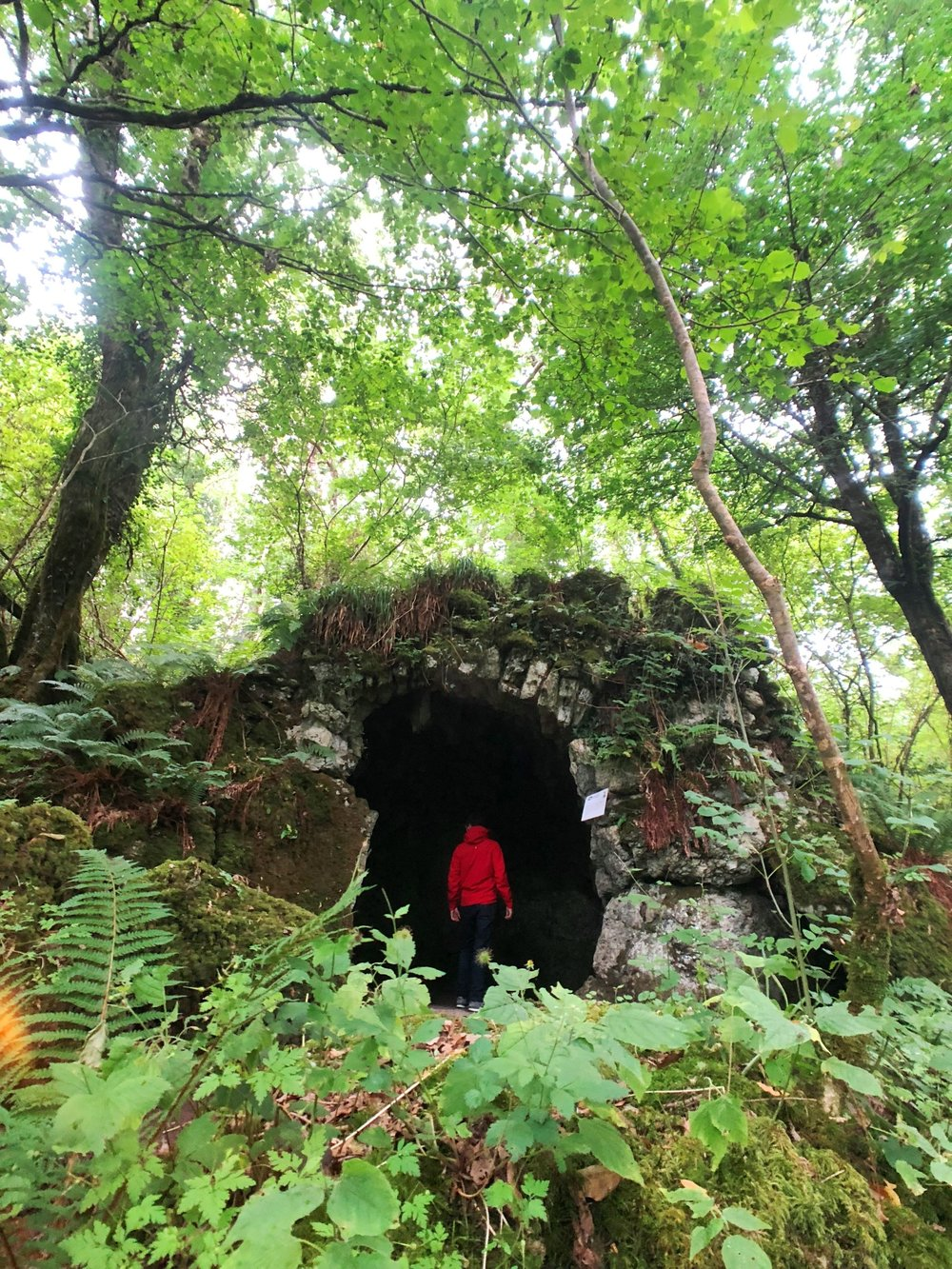 MARBLE ARCH CAVES -