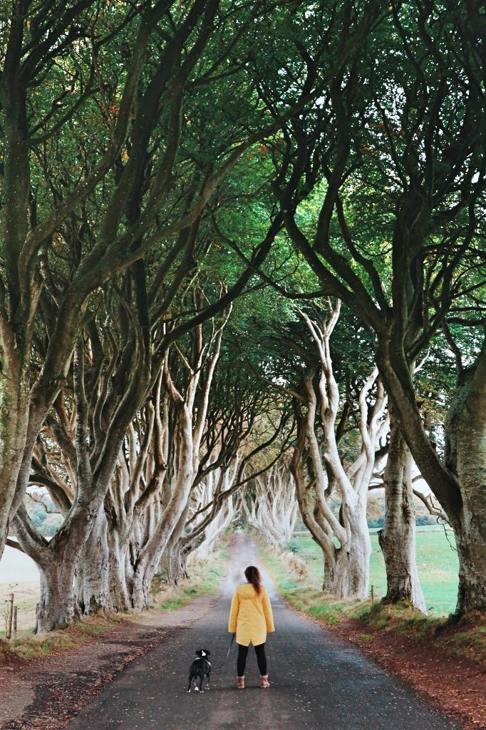 sasha-ferguson_insta_ni_explorer_northern_ireland (4).jpg