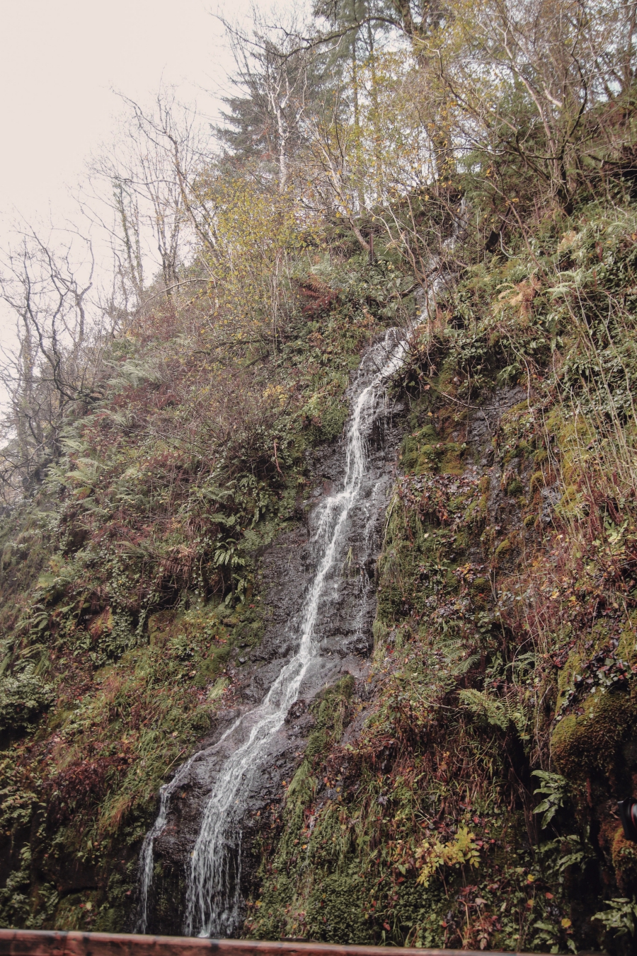 glenariff-forest-waterfall-northern-ireland-full-shilling-ni-explorer (6).jpg