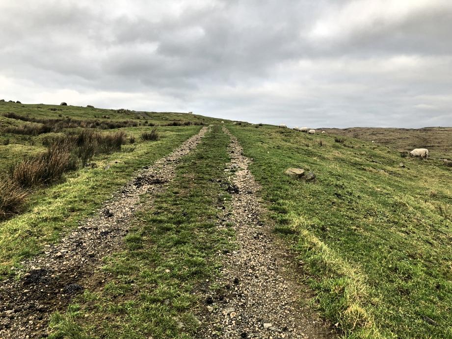 fairhead-cliffs-northern-ireland-directions (27).jpg