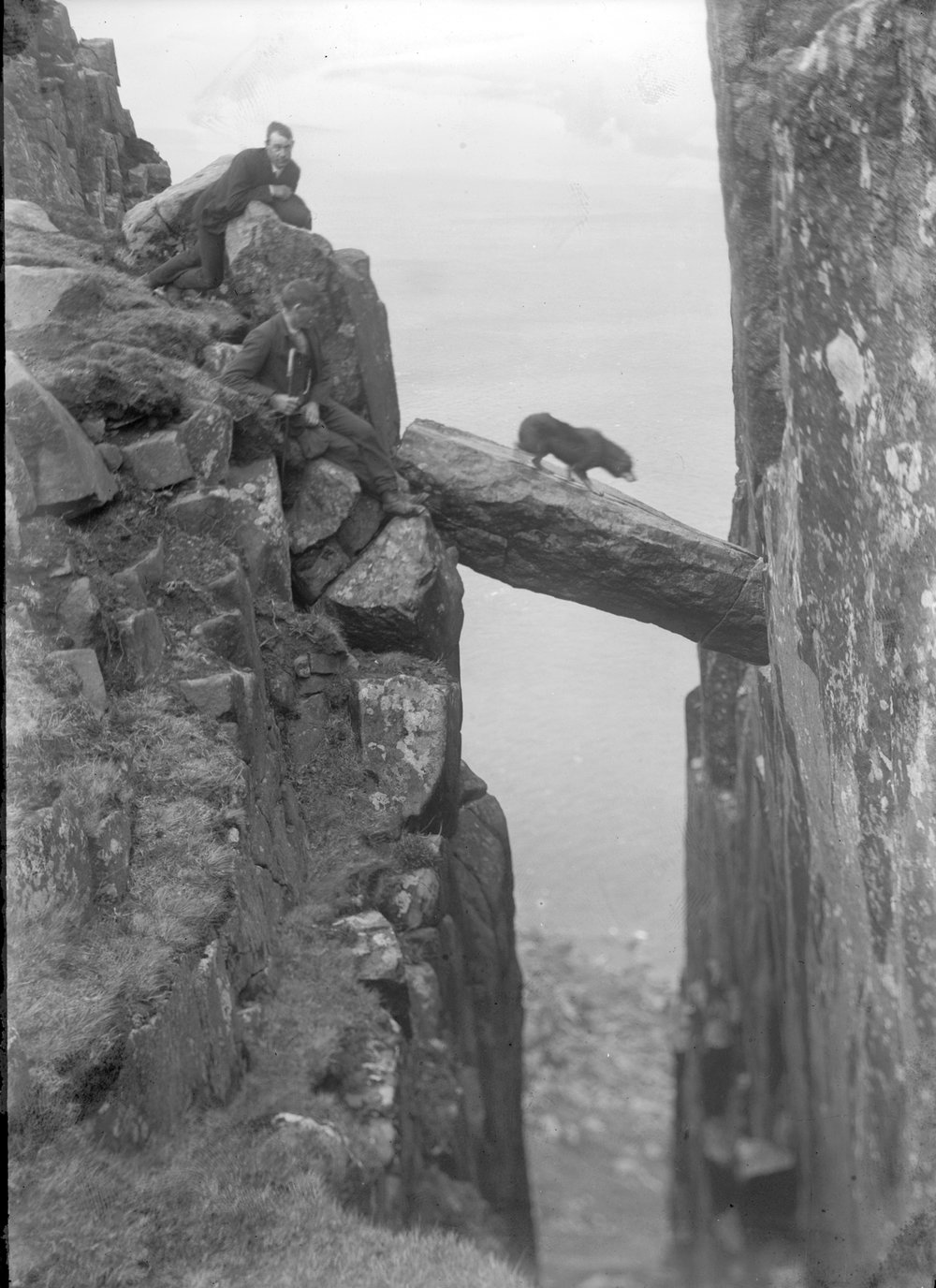 Brave Dog!  Source: National Libraries of Ireland