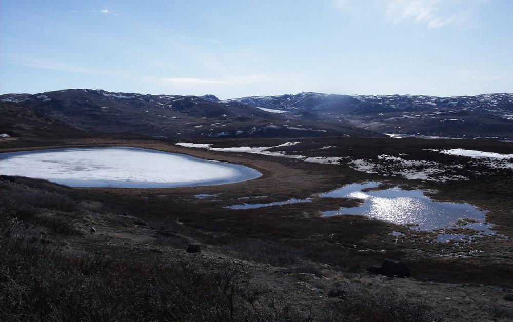 mosquito-pond.jpg