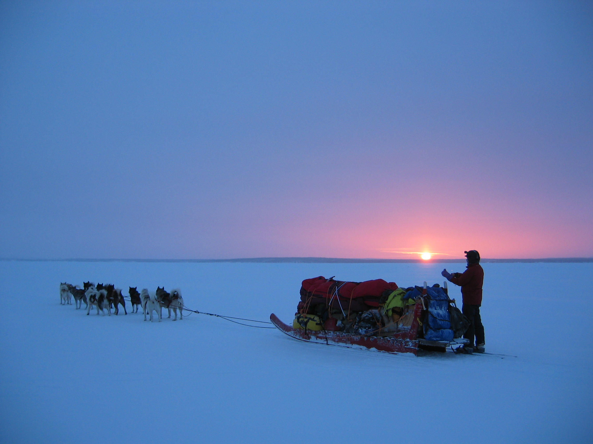 The sled dog team heads out at Sunrise on another Go North! exploratory day.