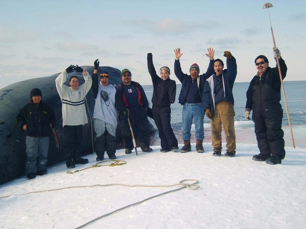 Point Lay community members celebrate the successful bowhead hunt.