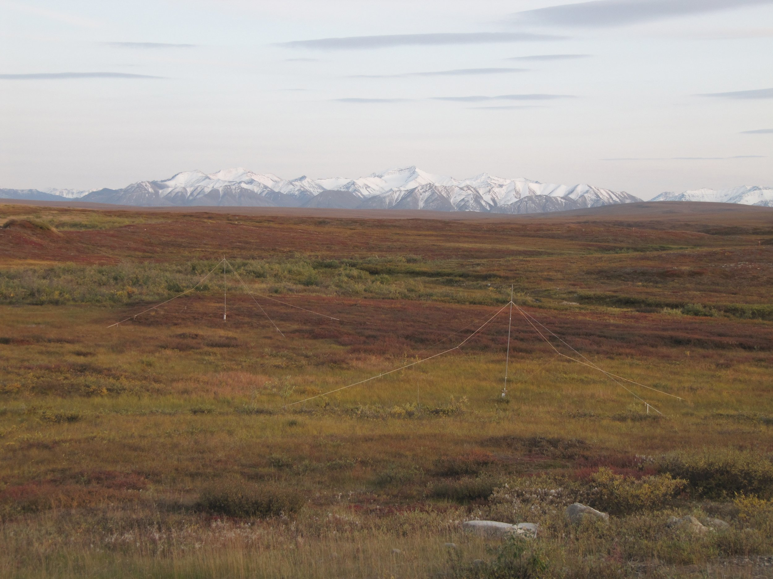 Looking south at the Brooks Range from Toolik, the changing colors indicate the changing seasons. Photo by Jason Neely