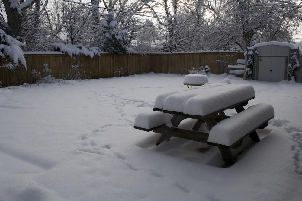 backyard-snow.jpg