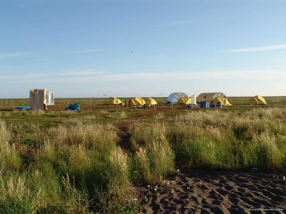 field-camp-at-krusenstern.jpg