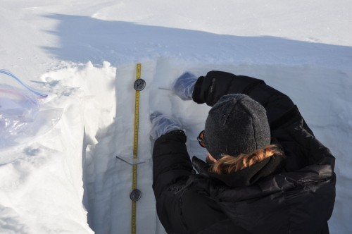 Taking-snow-samples-500x332.jpg
