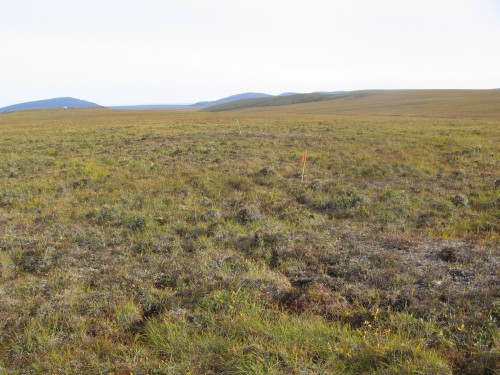 heath site