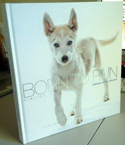 Borntorunbookdog-500x666