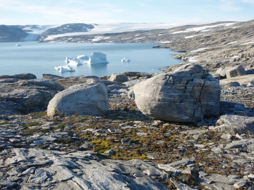 Gordon Hamilton and his colleagues focused their efforts to locate a downed WWII plane in southeast Greenland. The landscape of Koge Bugt, Greenland, the study area, is pictured here. Photo: Gordon Hamilton