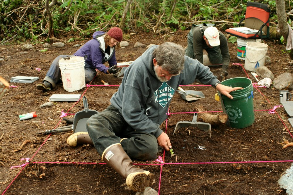From left, Rosie Bryson, Mark Luttrel, and Timothy Johnson excavate inside an 1880s bark house or tent (Structure 2) at Keik'uliyáa seal camp, Dinsenchantment Bay, 2013. Photo: Emily Silber