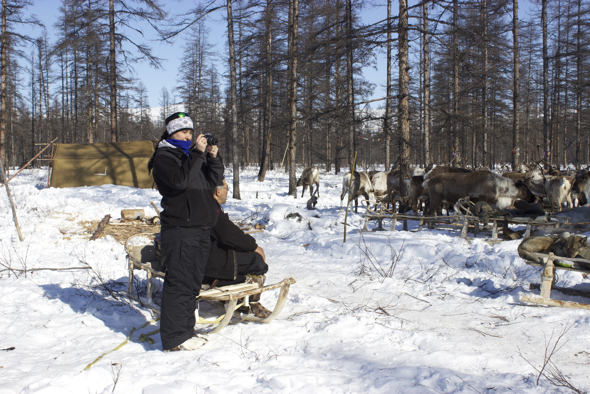 Stacy Rasmus engaged in peer observation of research at reindeer herding camp in Siberia. Photo: Stacy Rasmus