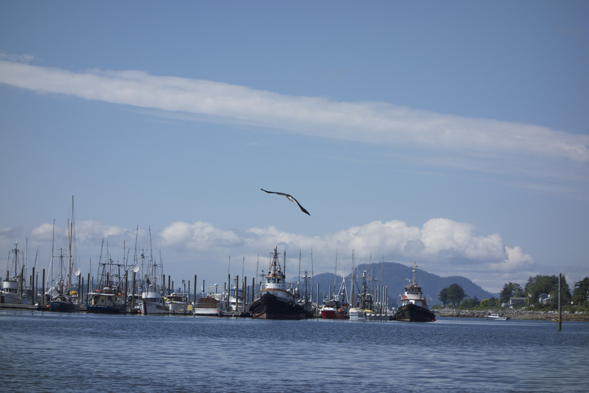 Sitka, AK., is one of two commercial fishing communities featured in this comparative study on Dillingham and Sitka. Photo: Taylor Rees