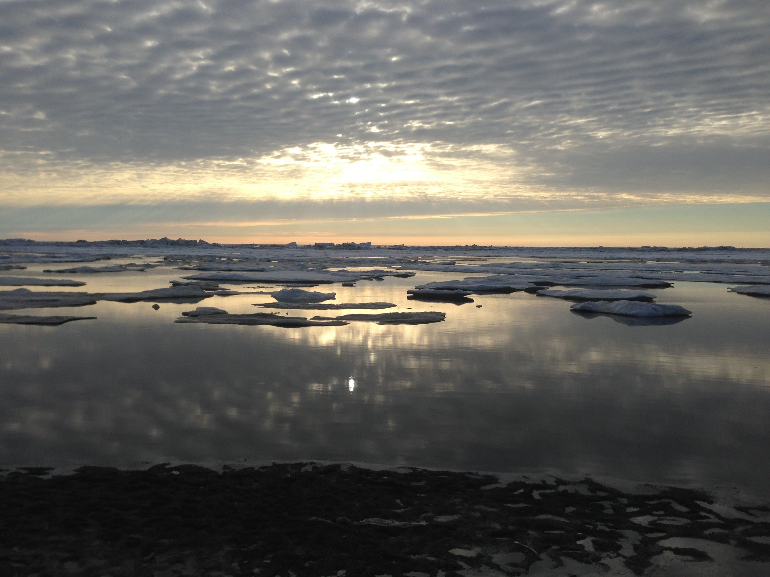 Barrow Alaska is the stage for a project where scientists are teaming with indigenous communities to understand and document how they are navigating environmental, political and economic changes in the 21st century. Photo: Sarah Huang