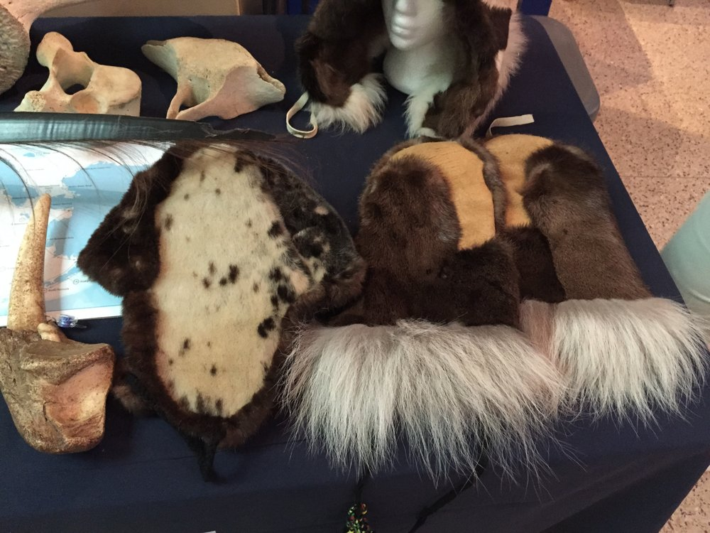 Traditional clothing made from animal skins were also on display. The hat (left) is made of ring seal and sea otter fur. Sea otter fur is the densest fur of any animal, which has made it a favorite of traditional craftsmen and craftswomen in the Arctic for centuries. The gloves (right) are made of beaver, wolf and moose pelts.