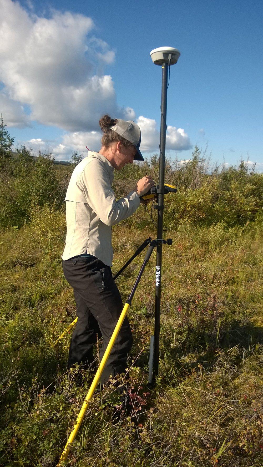 Katrine Gorham working at the NEON Alaska Healy site measuring study plots using survey equipment. Photo: NEON Alaska