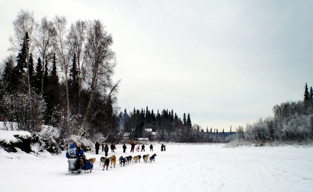 Musher Hugh Neff heads toward Nordale Road Bridge in North Pole about 18 miles from downtown Fairbanks, which is the start of the Yukon Quest, during a previous race. He won the Yukon Quest for a second time in 2016. Photo: James Brooks