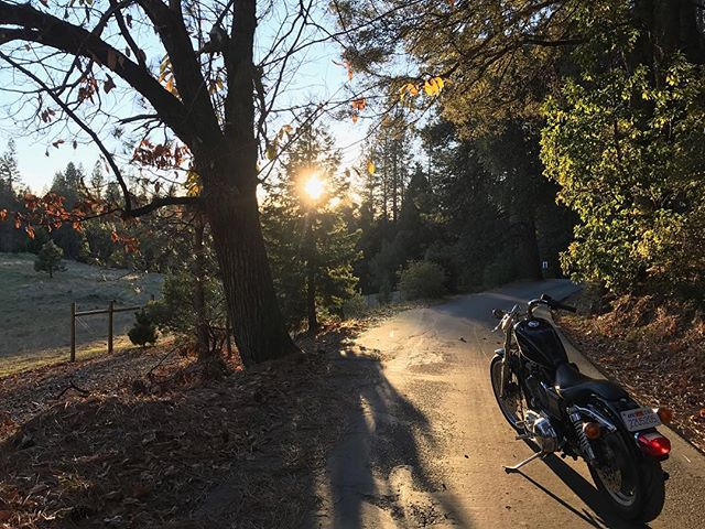 Might be cold, but it sure is pretty.  Be like @y0urspiritanimal, go ride.
