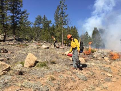 Fire managers carefully monitor conditions, including a favorable weather forecast (temperature, wind, precipitation, etc.), fuel moisture, smoke dispersal and staffing. Weather is monitored throughout the burn and burning is halted if conditions fall outside of the required conditions.