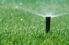 turfgrass irrigation seminar.jpeg