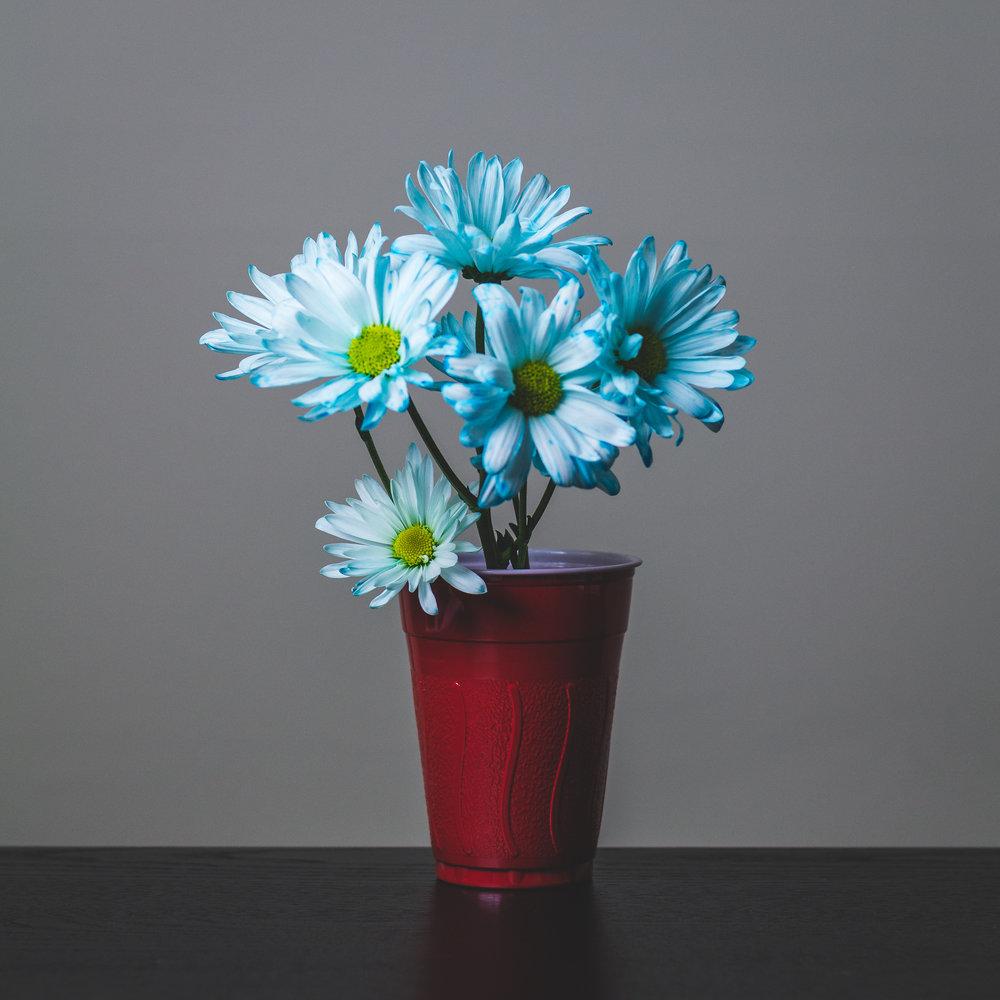 Blue: Hour 24