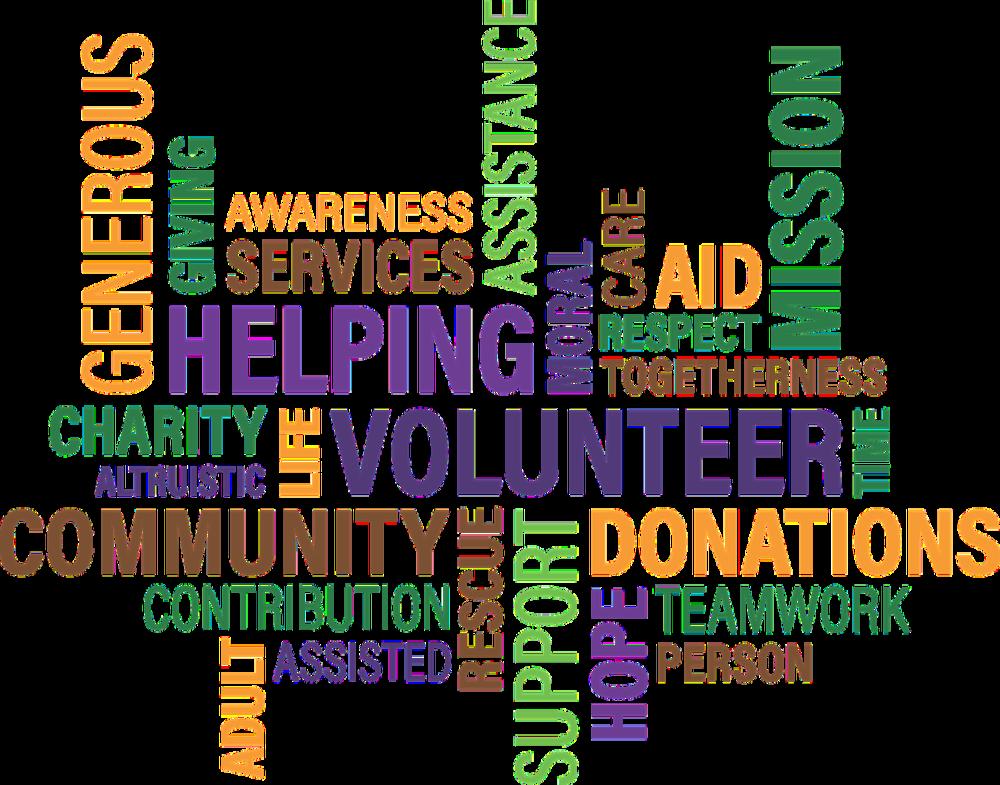 Volunteer Non-profit Work