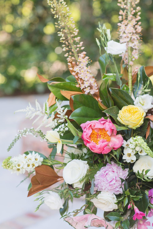 magnolia_056.jpg