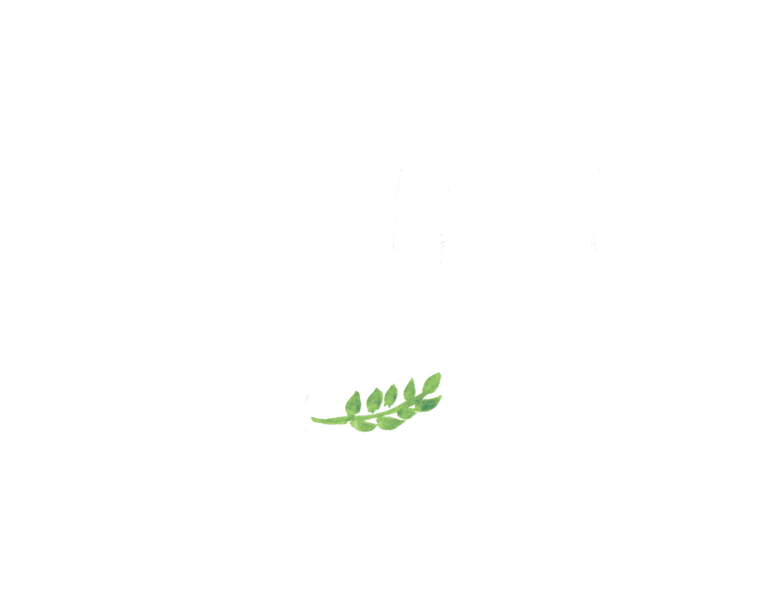Laura Klacik Photography