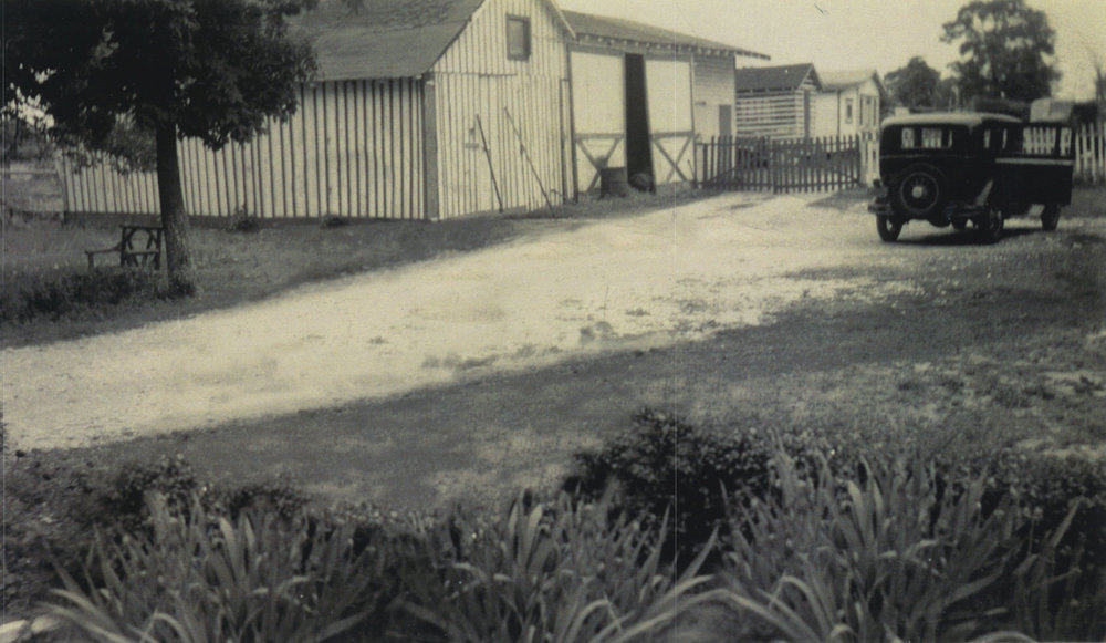 Villari Vineyards circa 1930