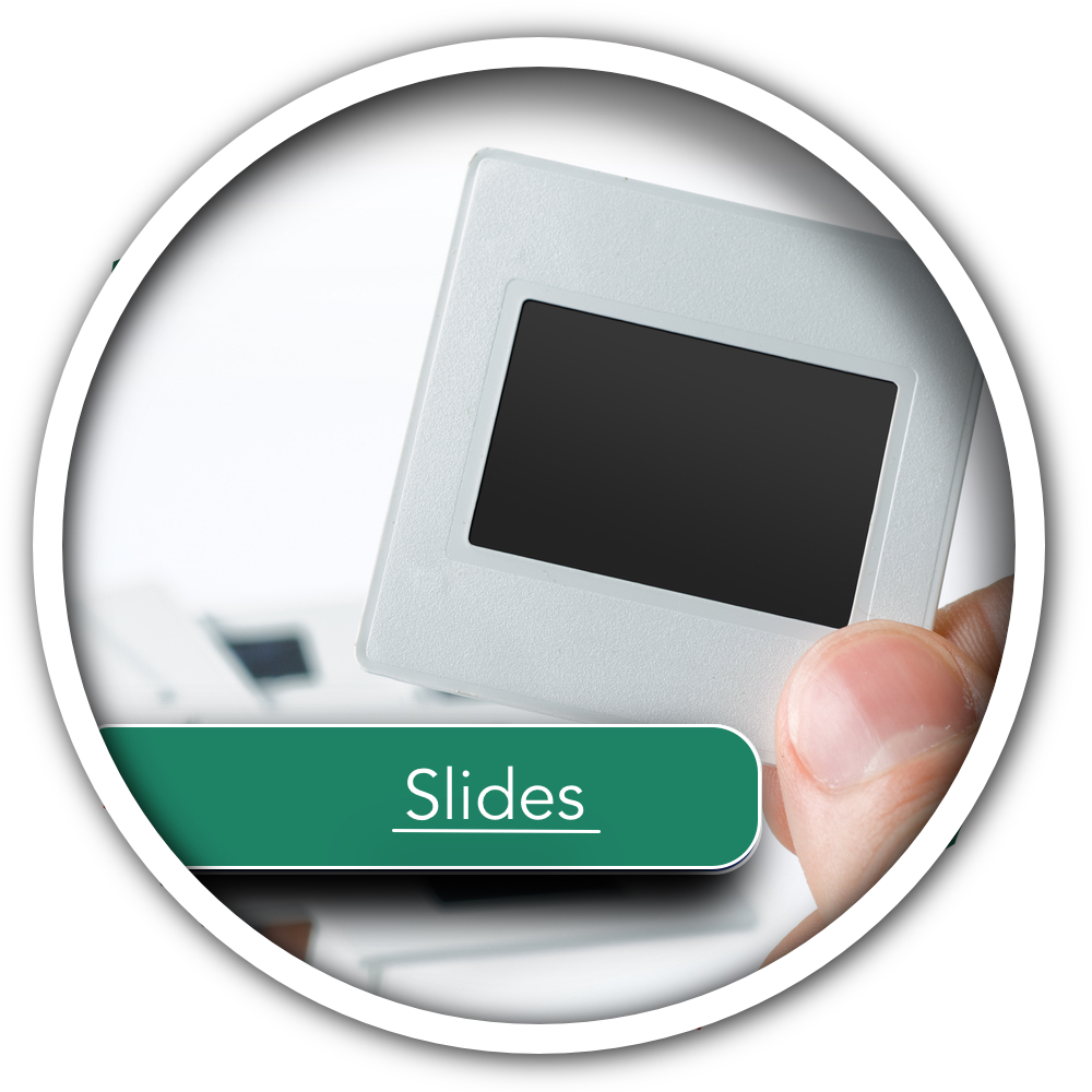 slides button no background.png