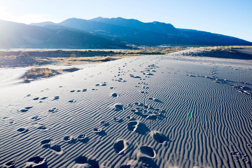 Feeling+Like+An+Inspirational+Desert.jpeg