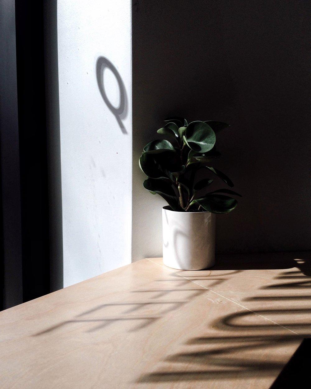 Quantum_Coffee.jpg